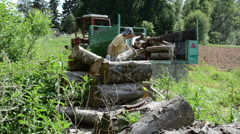 Forester working in wood pile on a trailer large sawn logs Stock Footage