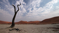 Cloud time lapse with dead tree at Sossusvlei Stock Footage