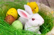 Stock Photo of easter bunny and eggs