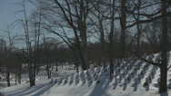 Stock Video Footage of Arlington Cemetery winter scene