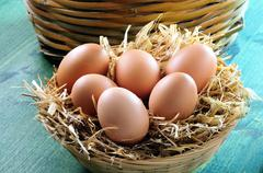 Fresh eggs in a straw basket Stock Photos