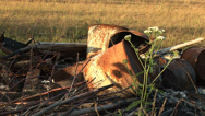 Stock Video Footage of Old Rusty Rusted Barrels Oil Drums Medium Shot MS