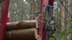 Forestry - loading wood logs Stock Footage