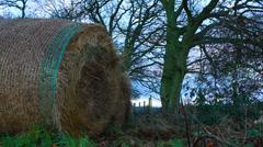 Rural scene (dolly shot) Stock Footage