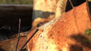 Stock Video Footage of Old Rusty Rusted Barrels Oil Drums Rack Focus