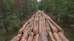 Transporting wood logs - stock footage