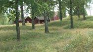 Stock Video Footage of Red Swedish Cottages Forest Pan Right