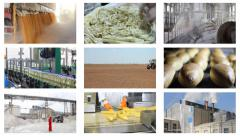 Industrial Production, People Working Stock Footage