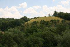 Trees On A Hill And With Puffy Clouds Stock Photos