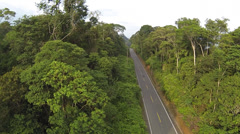 Road running through primary Amazonian rainforest in Ecuador Stock Footage