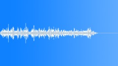 Flesh Sound Effect