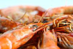 fresh boiled shrimp - stock photo