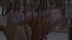 Stock footage food chicken processing factory chicken on the hook Stock Footage