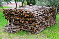 firewood bunch - stock photo