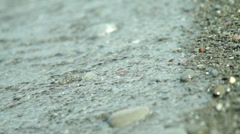 Close Up of Beach Shoreline HD Video Stock Footage