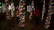 Stock Video Footage of Teen Girls Play In An Enchanting Forest of Trees Lit For The Holidays (Slo Mo)