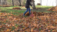Stock Video Footage of yard covered with dry leaves. Gardener raking leaves into pile