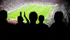 soccer fans stadium - stock photo