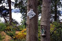 Native art on a cedar tree - stock photo