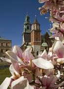 Poland, krakow, wawel, sigismund's cathedral and chapel as part of royal cast Stock Photos