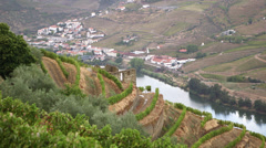 Douro valley vineyards Stock Footage