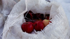 Winter apples in a nylon sack - stock footage
