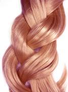 dark hair plait - stock photo