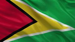 Flag of Guyana - seamless loop Stock Footage