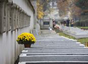 Stock Photo of poland krakow catholic rakowicki cemetery