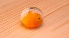Mandarin moldy Stock Footage