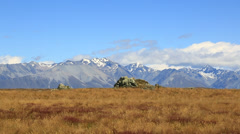Distant snow capped mountains with grassy fields in foreground. New Zealand. Stock Footage