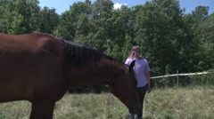 Horse and caregivers in a pasture Stock Footage
