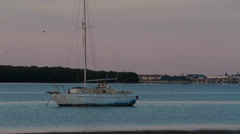 Old sailboat anchored early morning Tampa Bay Stock Footage