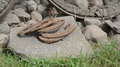 Hand put pile of rusty horse shoes on stones near carriage wheel Stock Footage