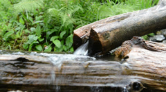 Small stream with potions made of wood Stock Footage