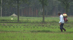A farmer in rice paddy fields in rural China Stock Footage