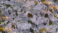 Running Water Surface Stock Footage