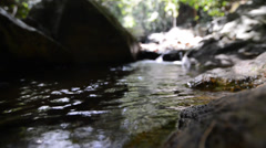 Water Flowing from a Stream Stock Footage