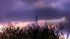Purple sky Stock Footage