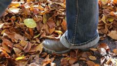 Woman walks through leafs Stock Footage