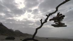 Coastal Winds Weathervane Stock Footage