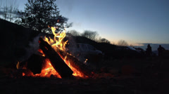 Fire after sunset in the woods Stock Footage