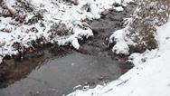Stock Video Footage of Gentle icy creek in the winter