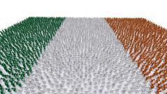 Irish Flag People Stock Footage