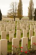 World war one cemetery tyne cot belgium flanders ypres Stock Photos