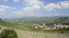 Piedmont, langhe, vineyards Stock Footage