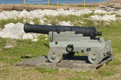 fort jackson cannon - stock photo