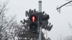 Traffic Lights Red For Pedestrians Still-Shot Stock Footage