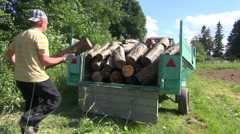 Lumberman man load firewood logs in tractor trailer and close it - stock footage