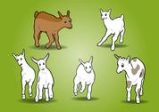 Stock Illustration of small goats